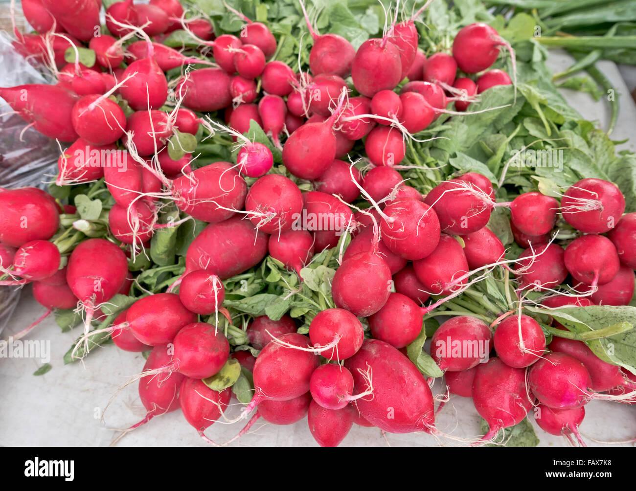 Bundled red radishes bundled, farmer's market. - Stock Image