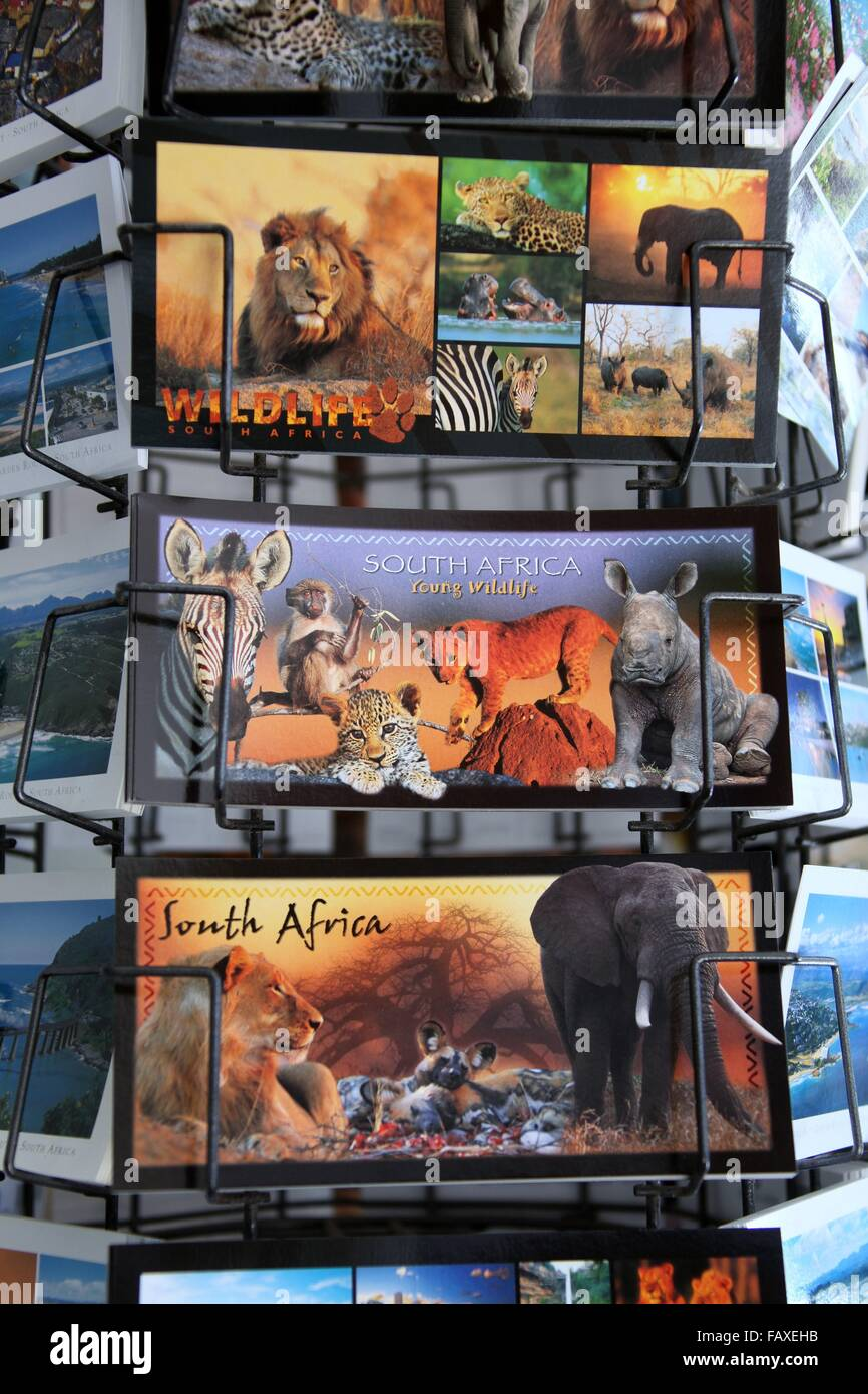 Postcards of South Africa - Stock Image
