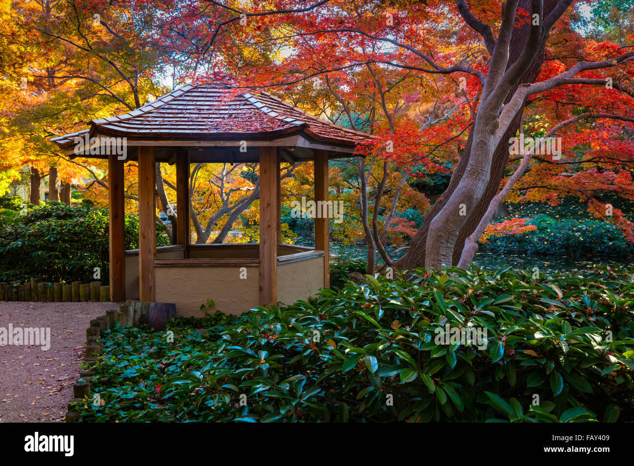 Japanese Garden Fort Worth Texas Stock Photos & Japanese Garden Fort ...