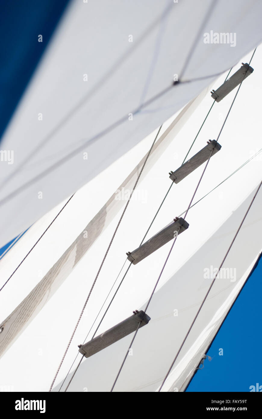 Mainstay and sail on a sloop. - Stock Image