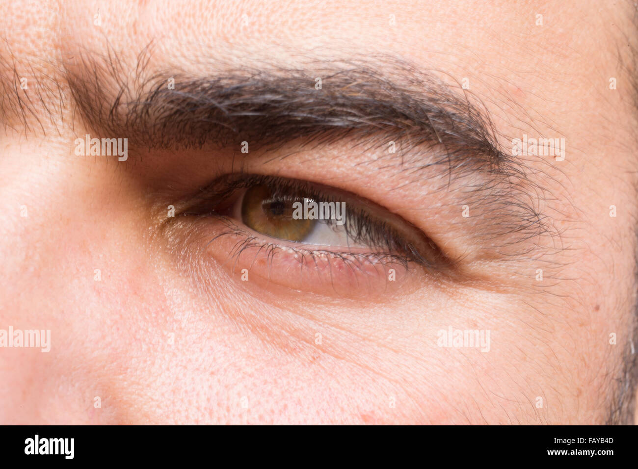 Sight - Stock Image