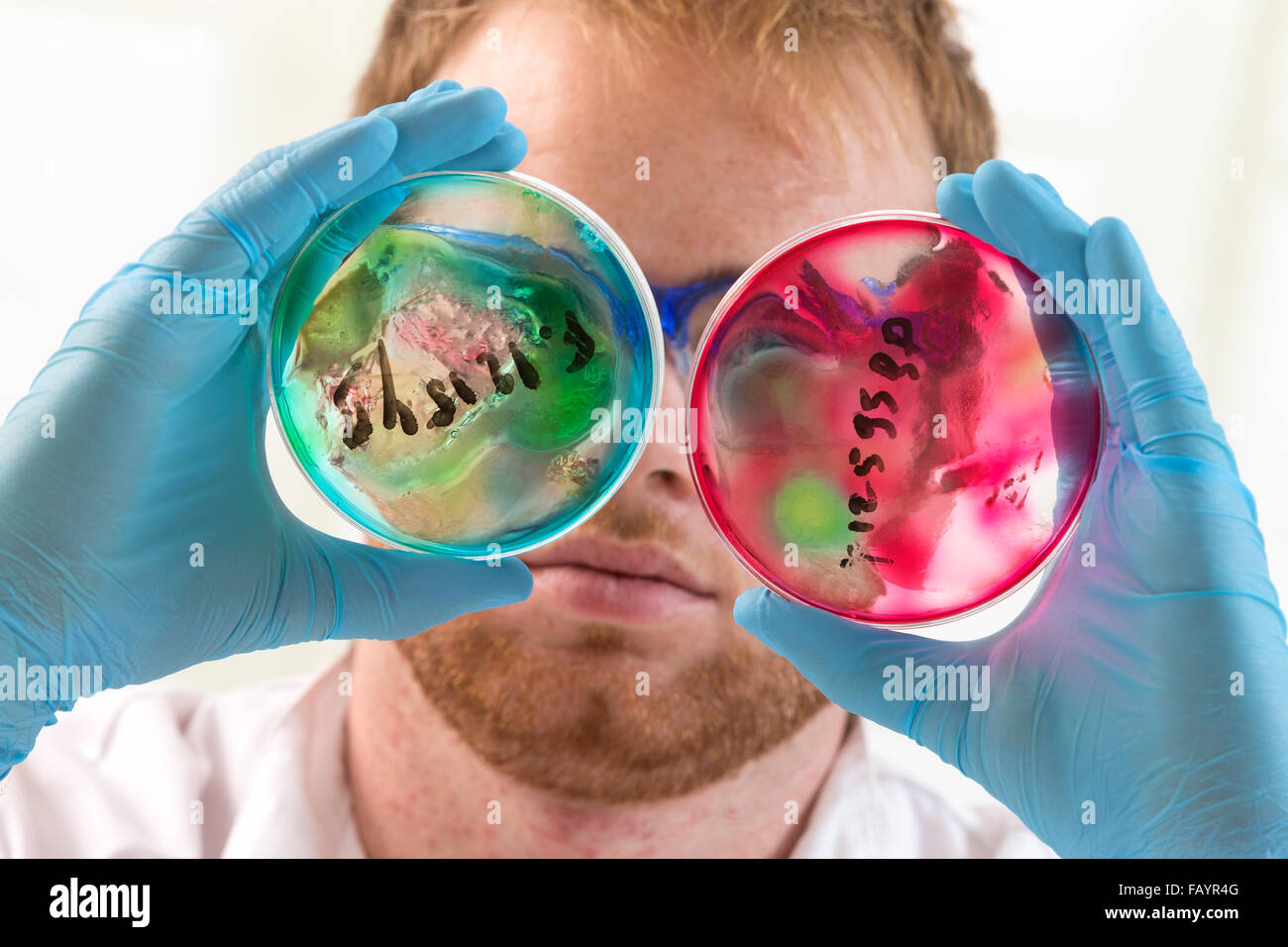 Health care and biotechnology concept. - Stock Image