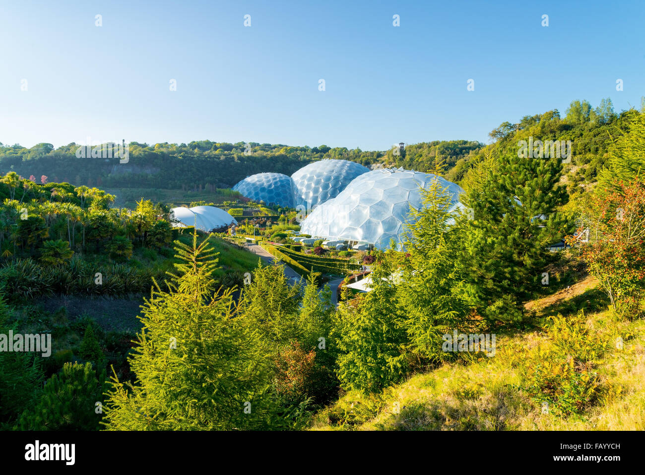 View the Dome Eden Project in Cornwall. - Stock Image