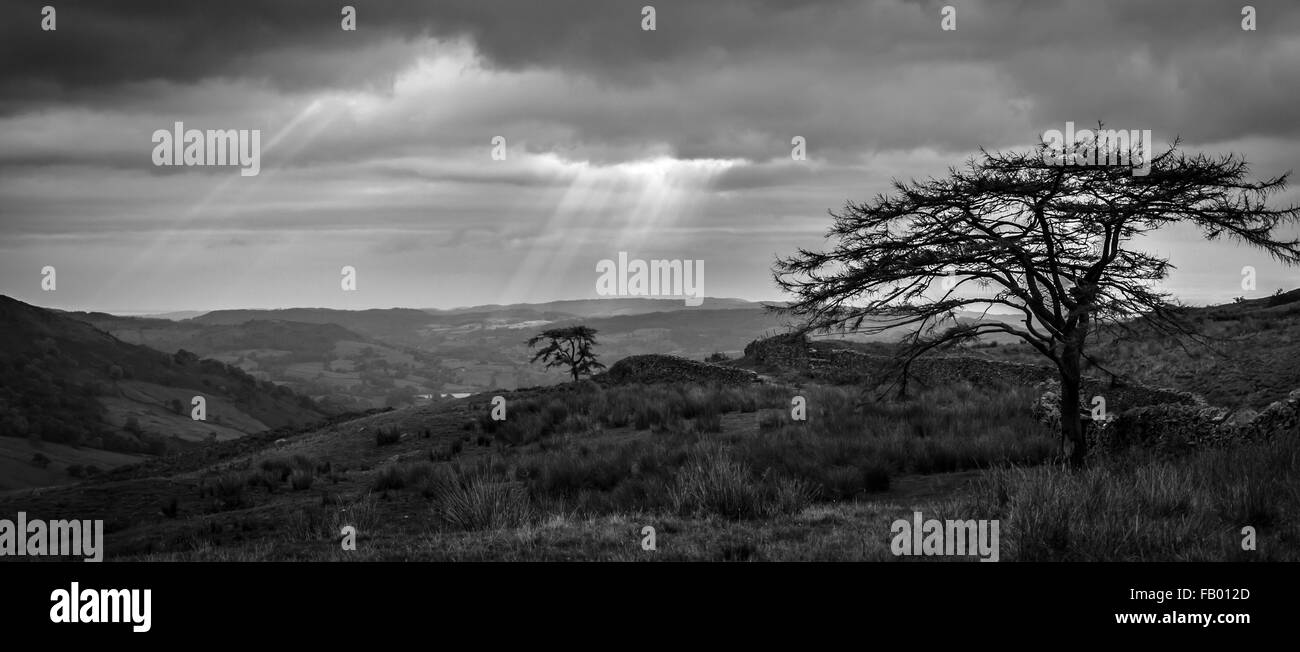 Sunlight breaks through the cloud near Windermere, Cumbria. - Stock Image
