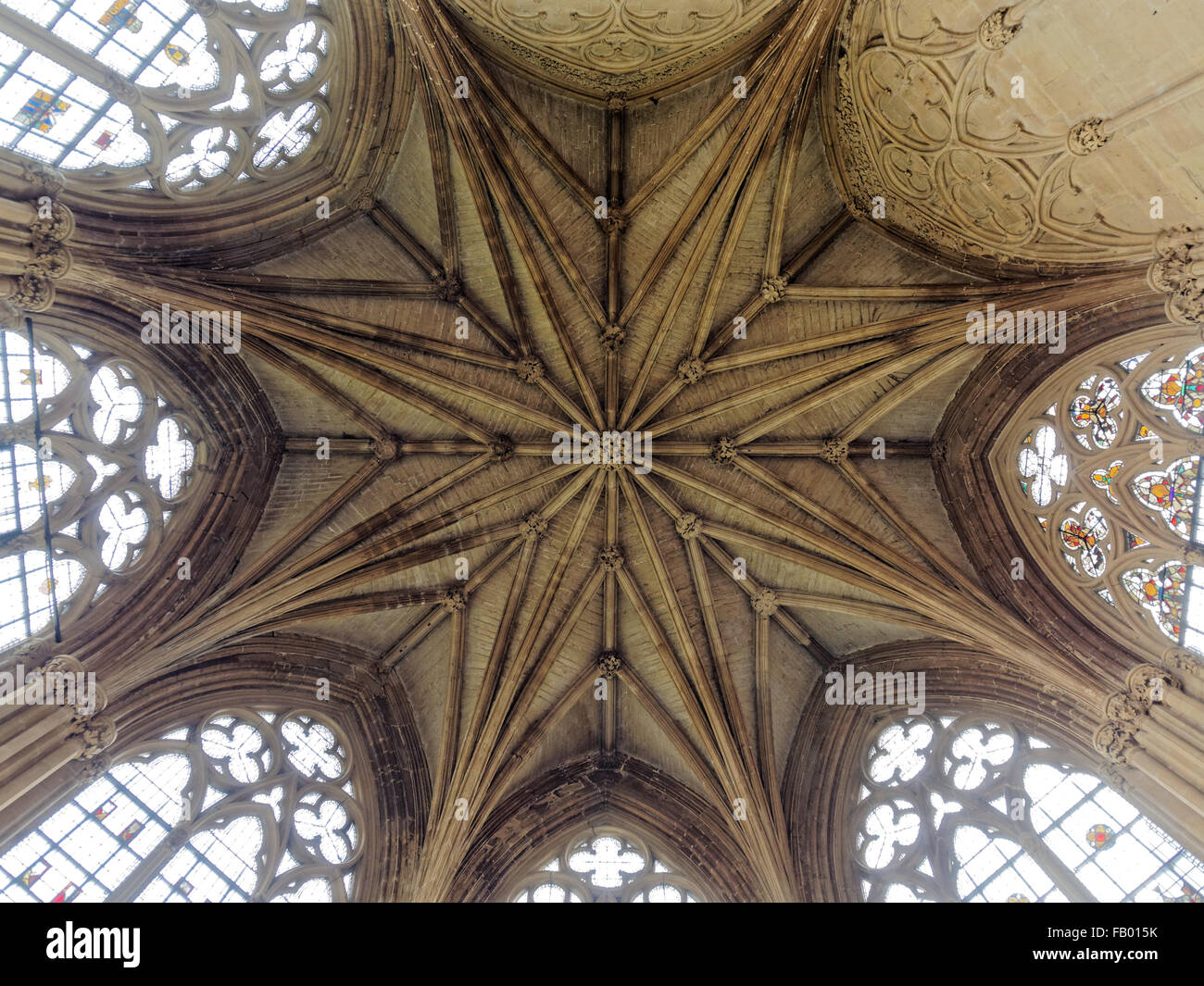 The vaulted Chapter House ceiling at Southwell Minster, Nottinghamshire, England, United Kingdom - Stock Image