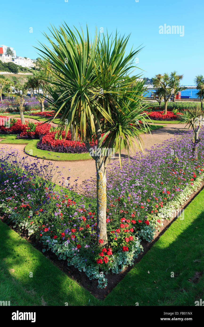 Palm trees and bright flowers formally planted in Abbey Park, Torquay, Devon, on a glorious summer's day - Stock Image