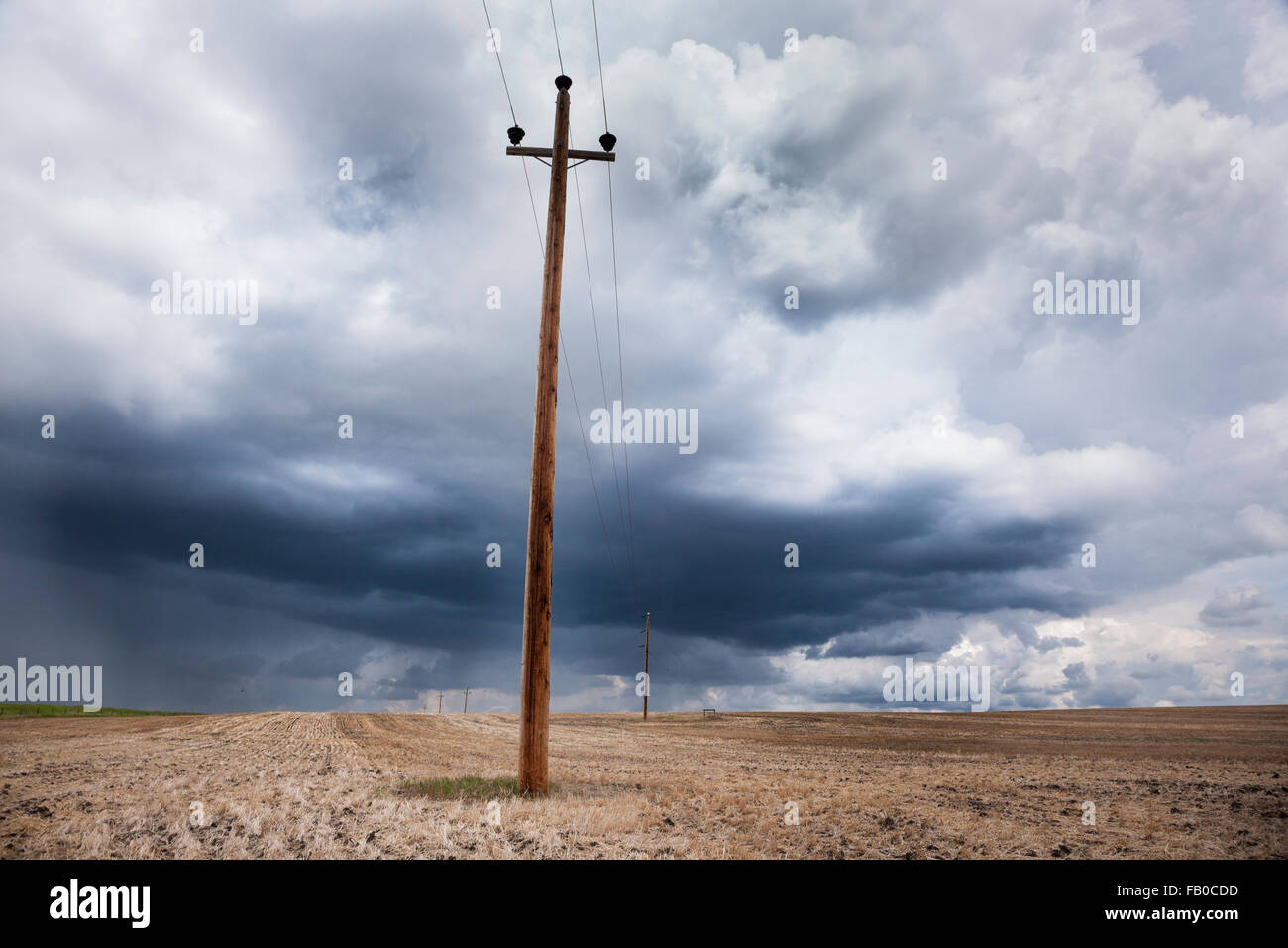 Raincloud after the harvest on the Great Plains of Alberta, Canada. - Stock Image