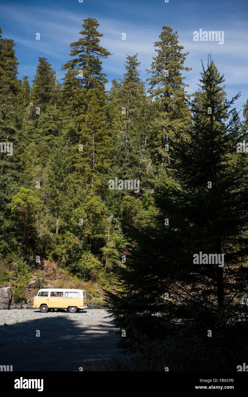 A yellow Volkswagen bus parked on the Smith River riverbed in the forest at Jebediah Smith Redwoods State Park in - Stock Image