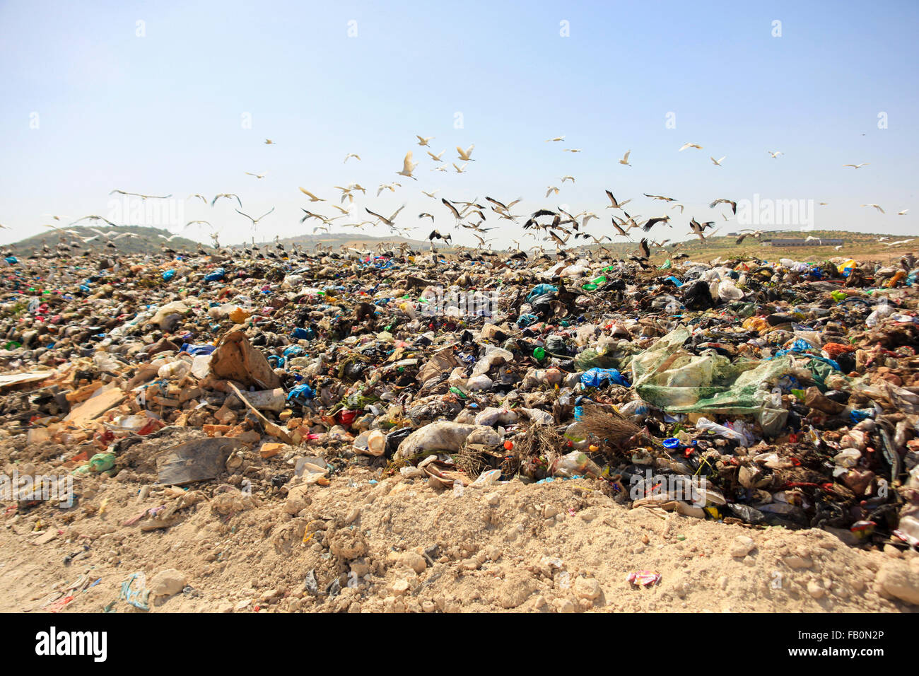 A bulldozer is arranging solid waste for a landfill site in Palestine - Stock Image