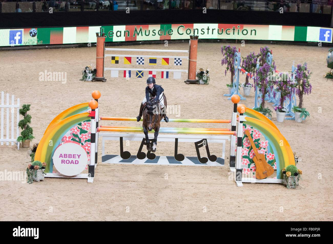The Liverpool International Horse Show , January 2016 , UK. Mille Allen on Balou Star - Stock Image