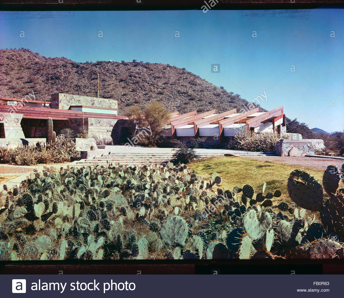 Taliesin West in Scottsdale (Ariz.), 1942 Feb.-1963. Exterior view of building with cactus in foreground. - Stock Image