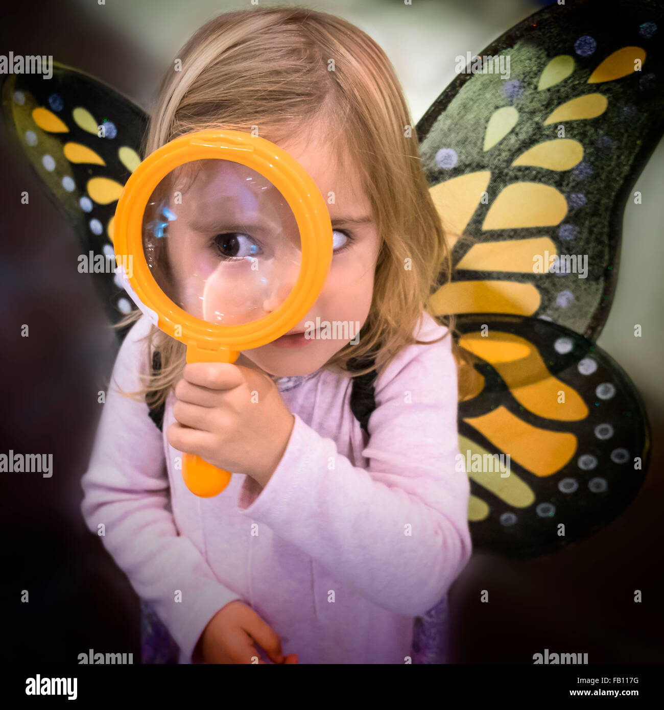 Girl (2-3) wearing butterfly wings looking through magnifying glass - Stock Image