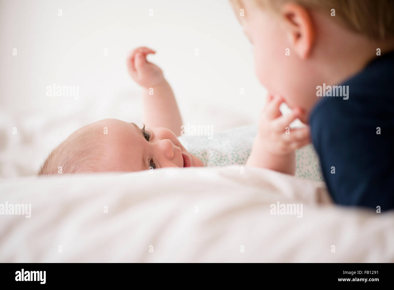Baby girl (12-17 months) touching brother face (2-3) - Stock Image
