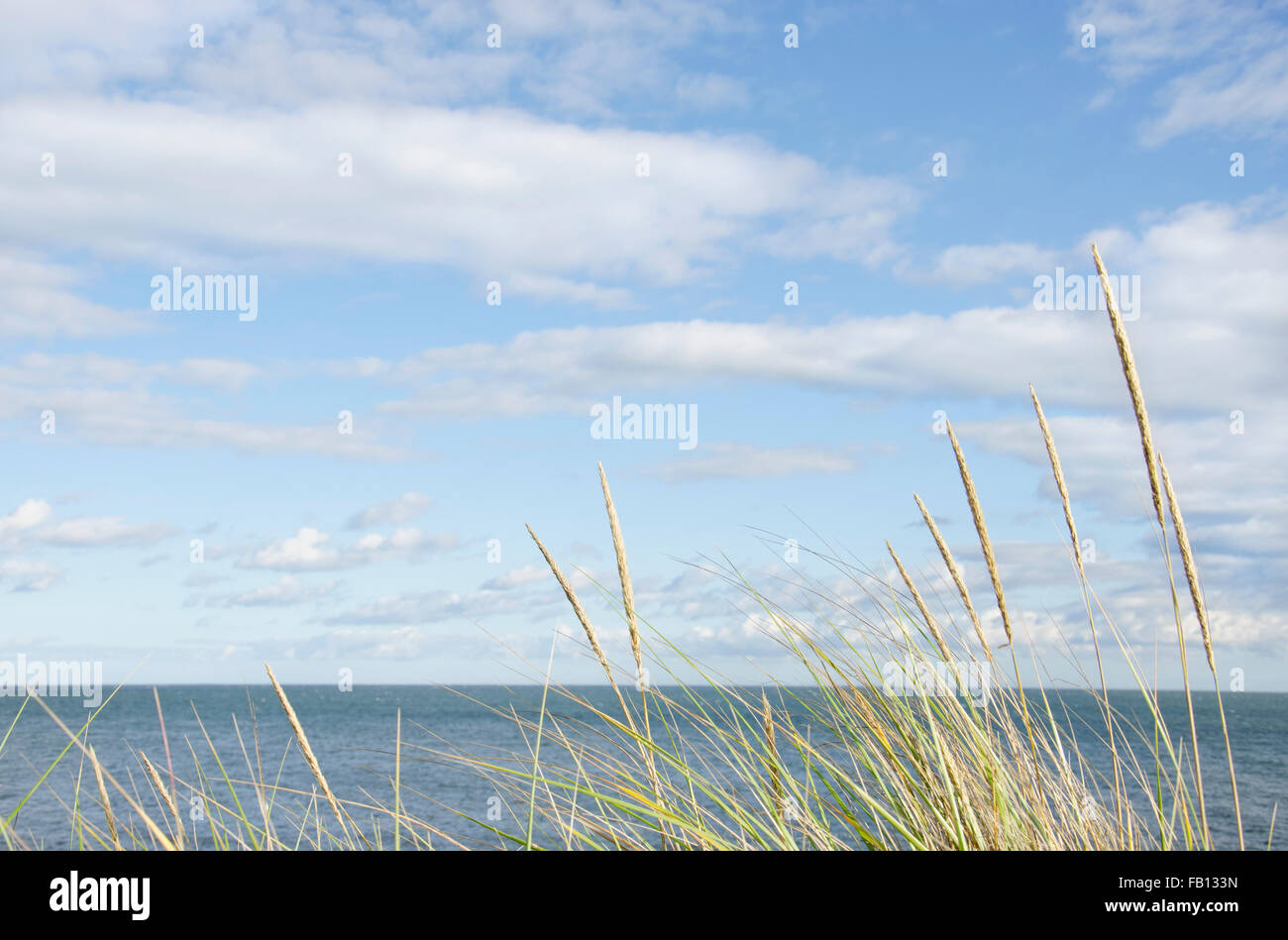 Tranquil seascape - Stock Image