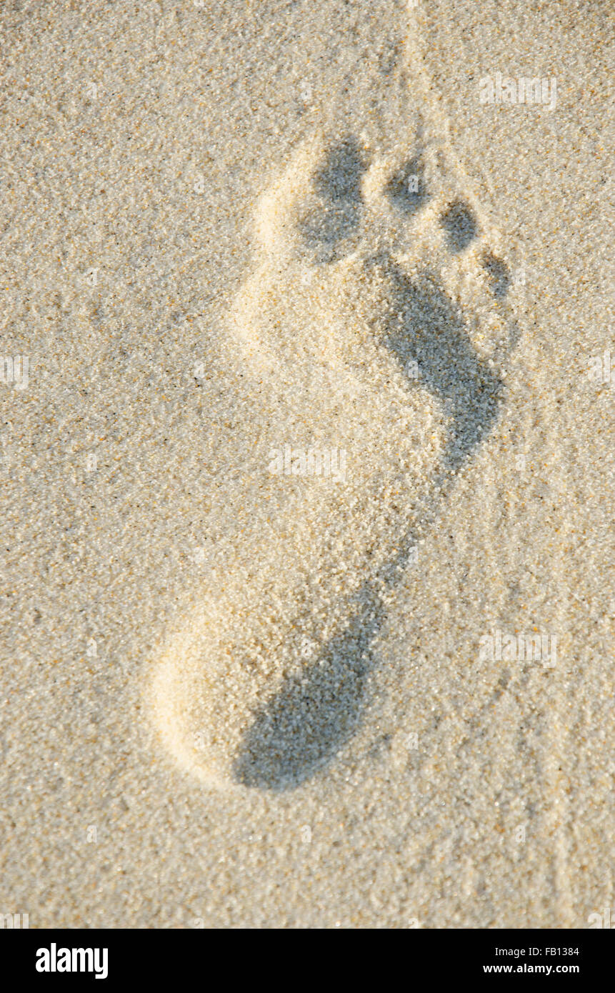 Close up of footprint in sand - Stock Image