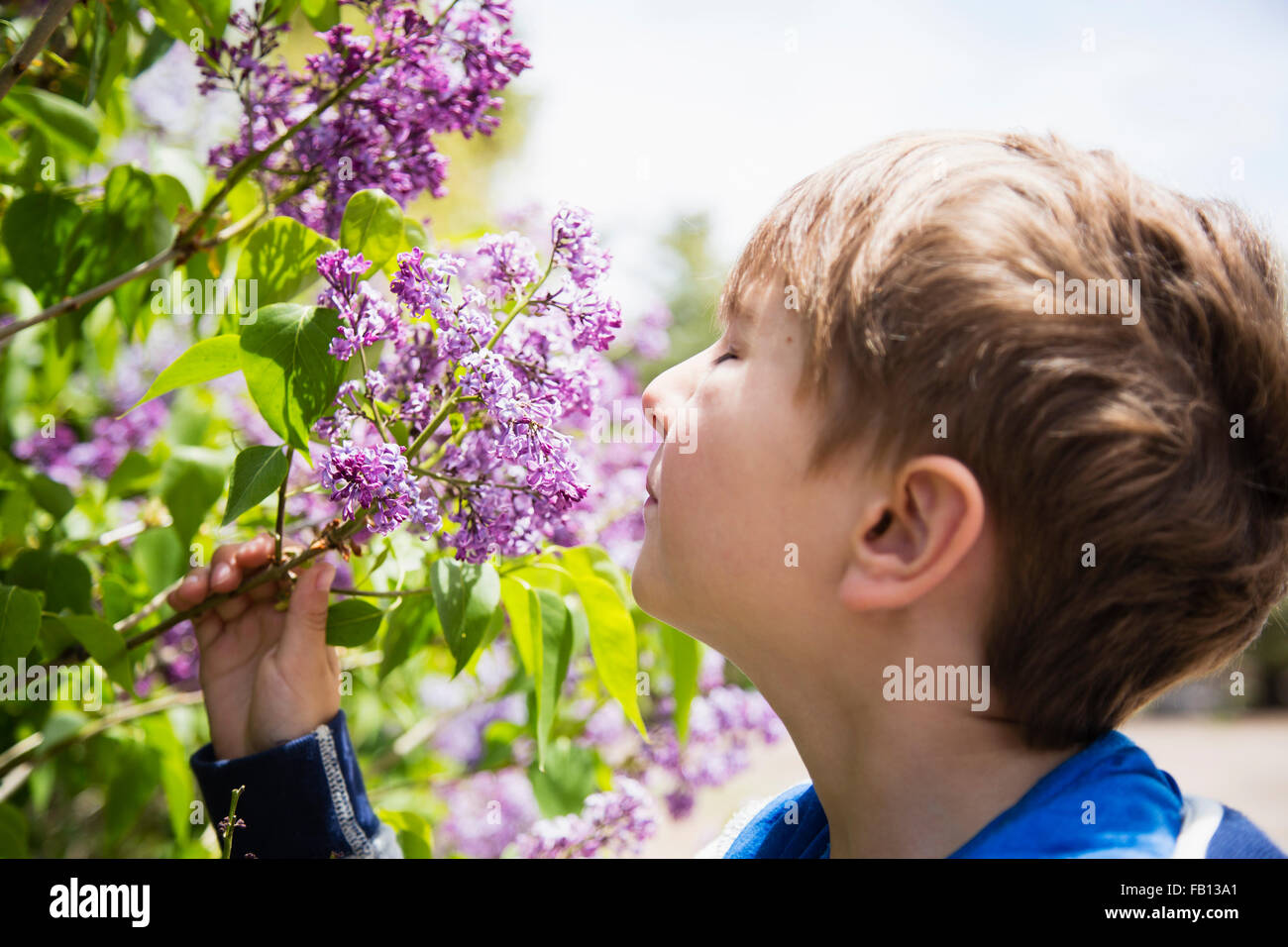 Portrait of boy (6-7) smelling flowers - Stock Image