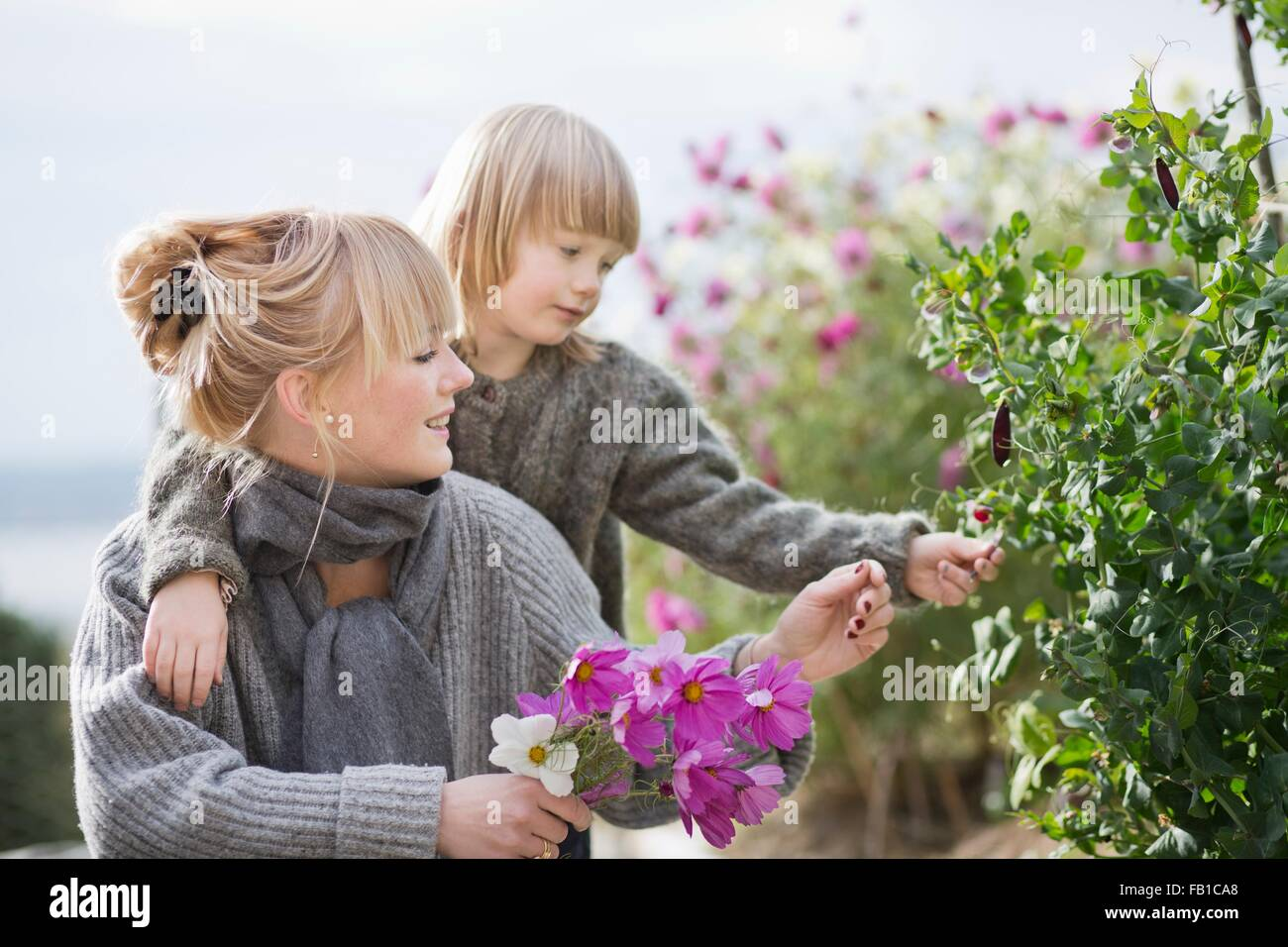 Boy and mother tending flowers in organic garden - Stock Image