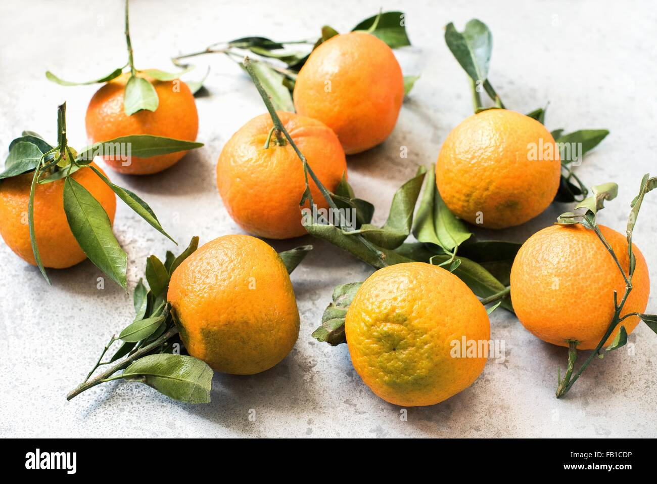 High angle view of oranges with leaves - Stock Image