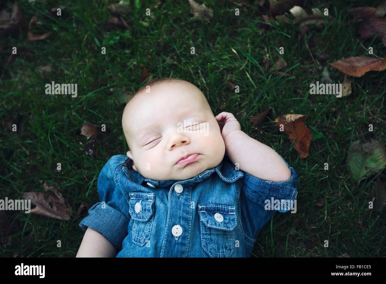 Baby boy wearing denim shirt lying on autumn leaf covered grass eyes closed - Stock Image