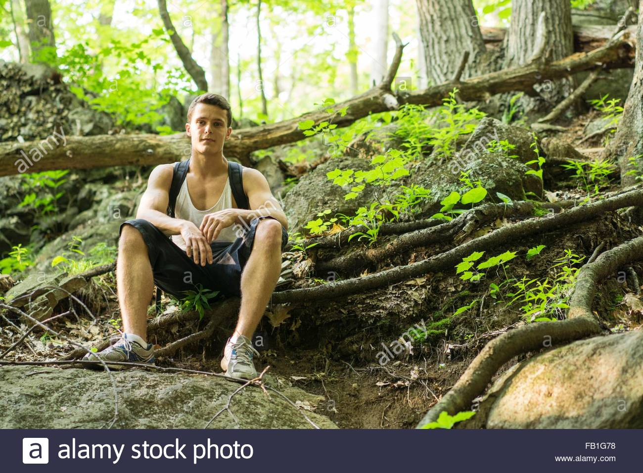 Young man sitting in forest, taking a break from hike - Stock Image
