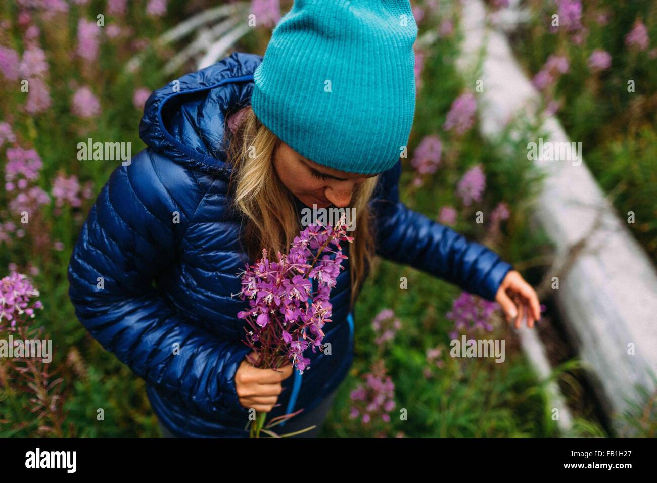 High angle view mid adult woman wearing padded coat knit hat holding wildflowers Moraine lake Banff National Park - Stock Image