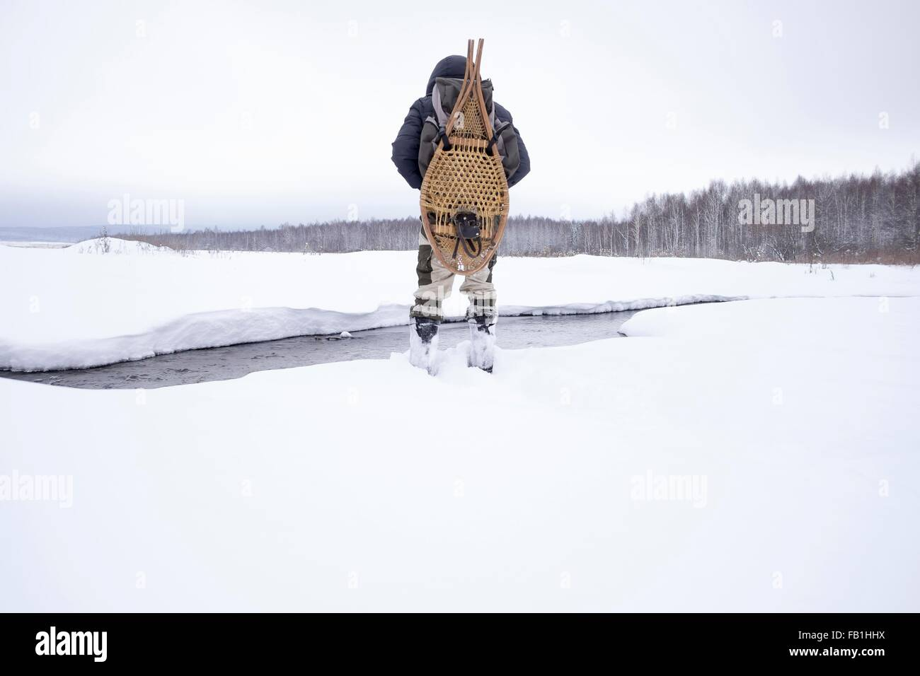 Rear view of mid adult man in snow covered field by river carrying traditional snowshoes, Ural, Russia - Stock Image