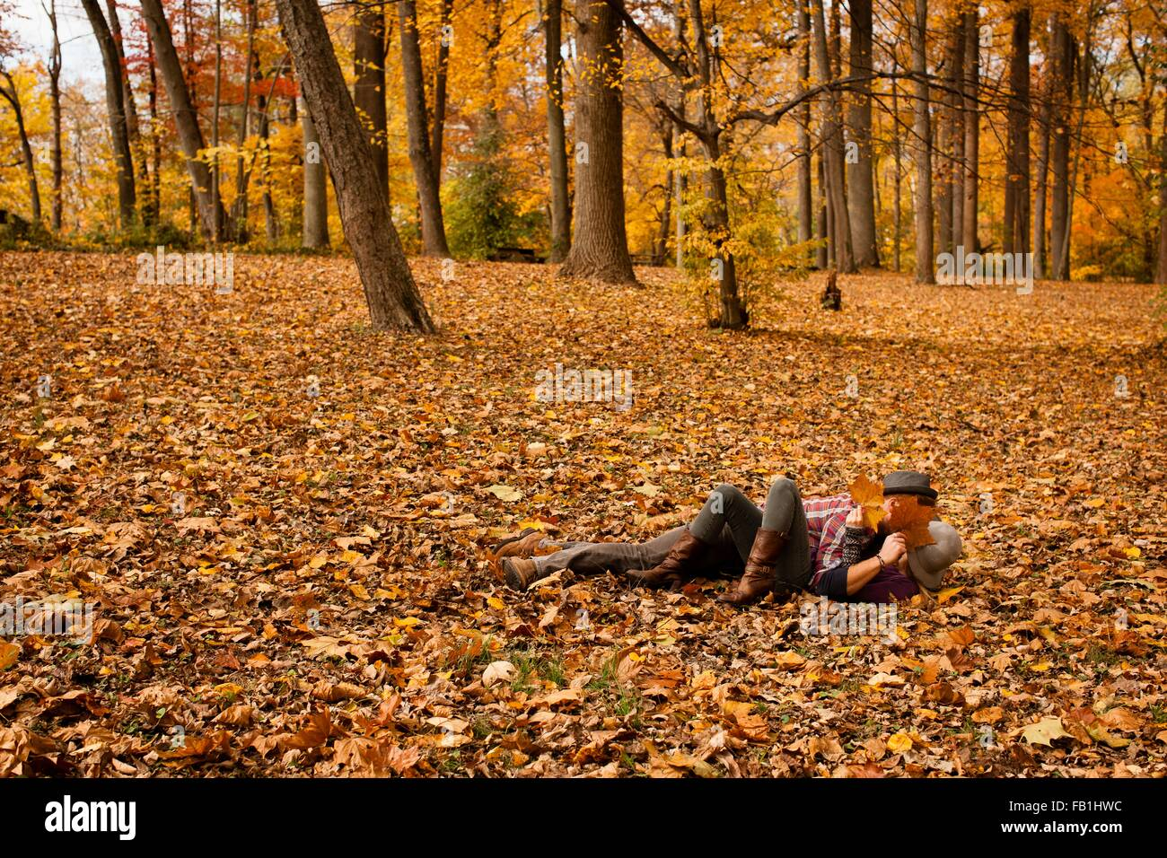 Young couple play fighting in autumn forest Stock Photo