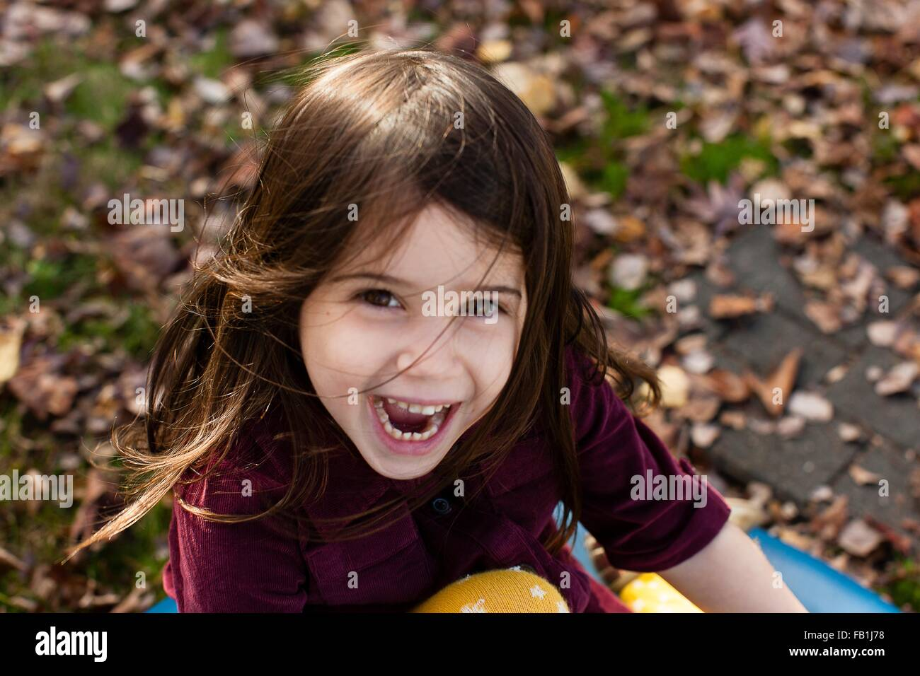 High angle portrait of young girl among autumn leaves looking at camera open mouthed smiling - Stock Image