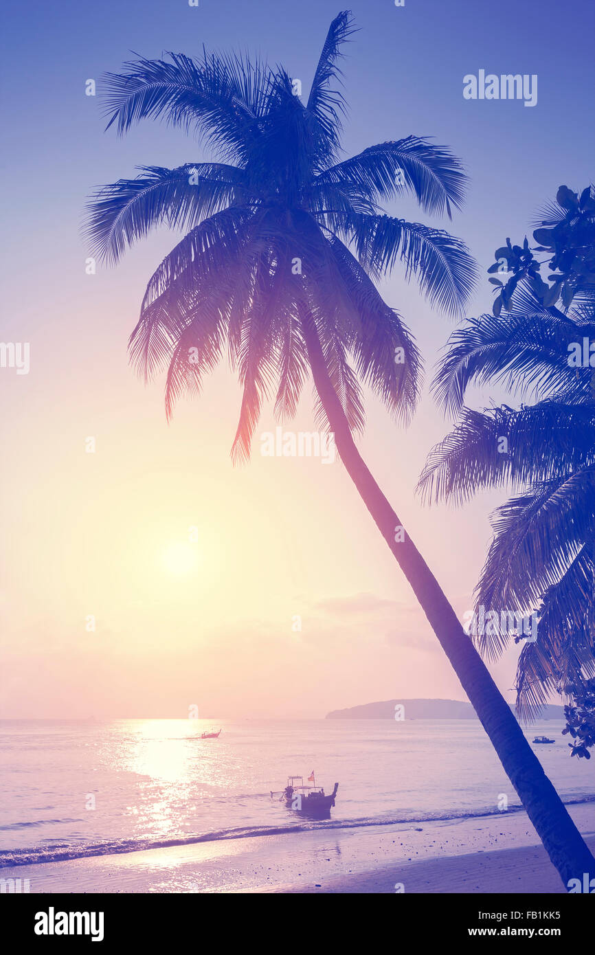 Vintage toned tropical beach at sunset. - Stock Image