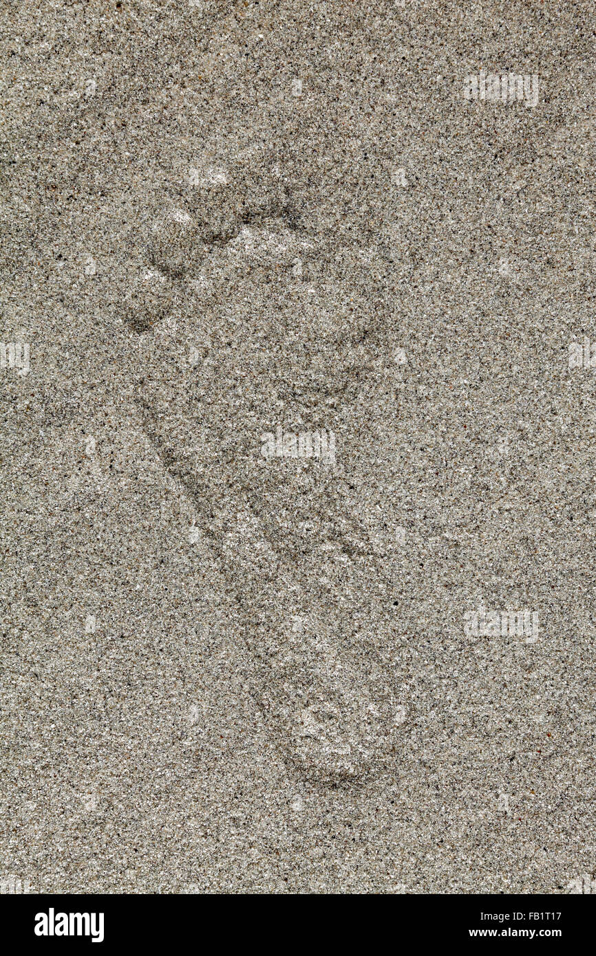 footprint of an adult at a beach - Stock Image