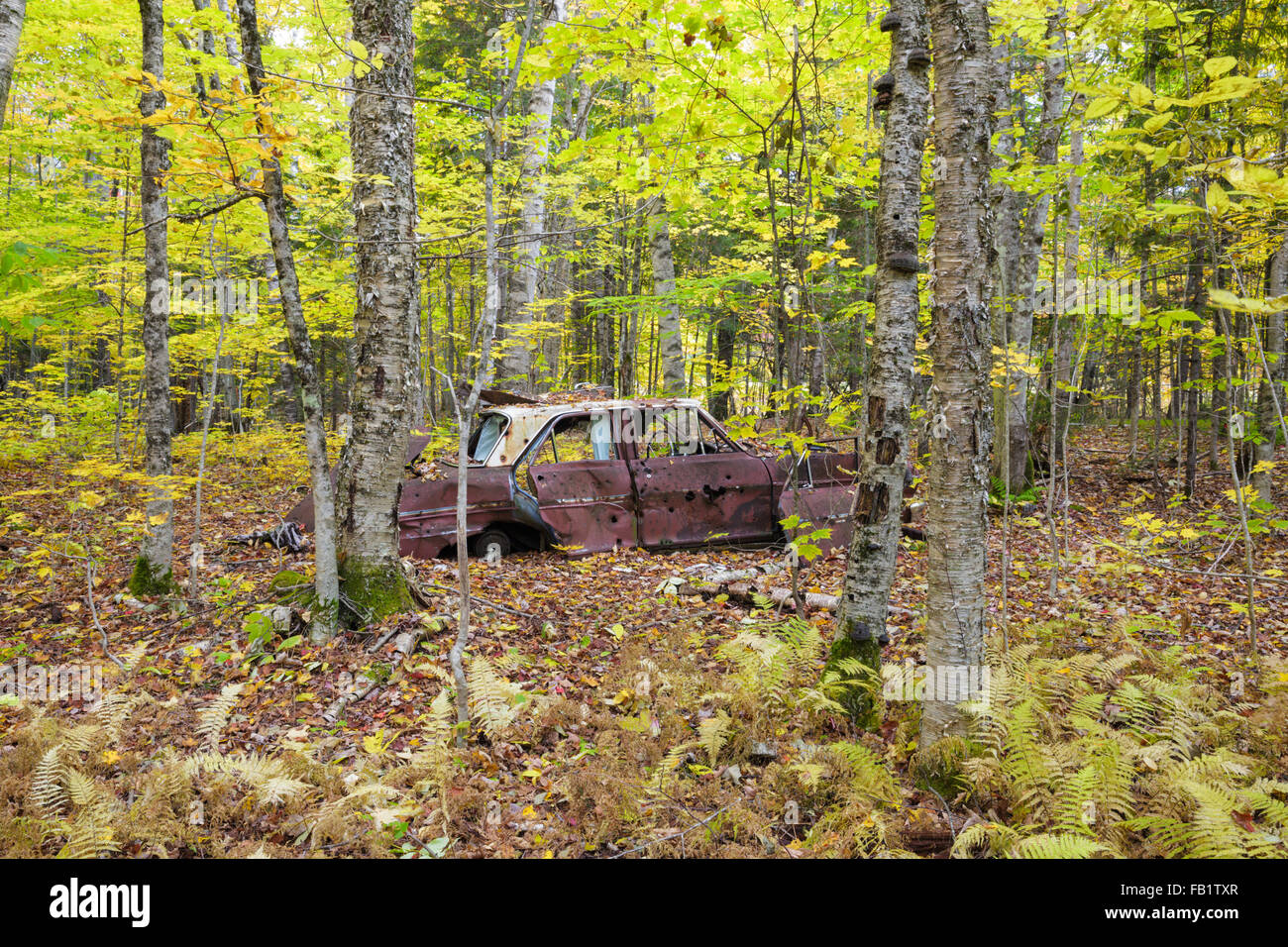 Abandoned car at the site of the old North Woodstock Civilian Conservation Corps Camp in North Woodstock, New Hampshire. - Stock Image