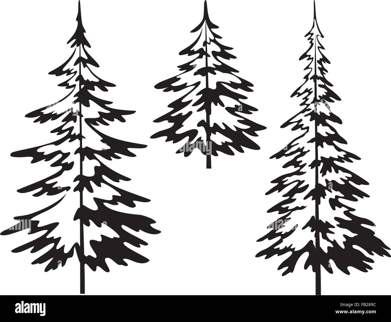 christmas fir tree contours stock vector art illustration vector  christmas fir tree contours
