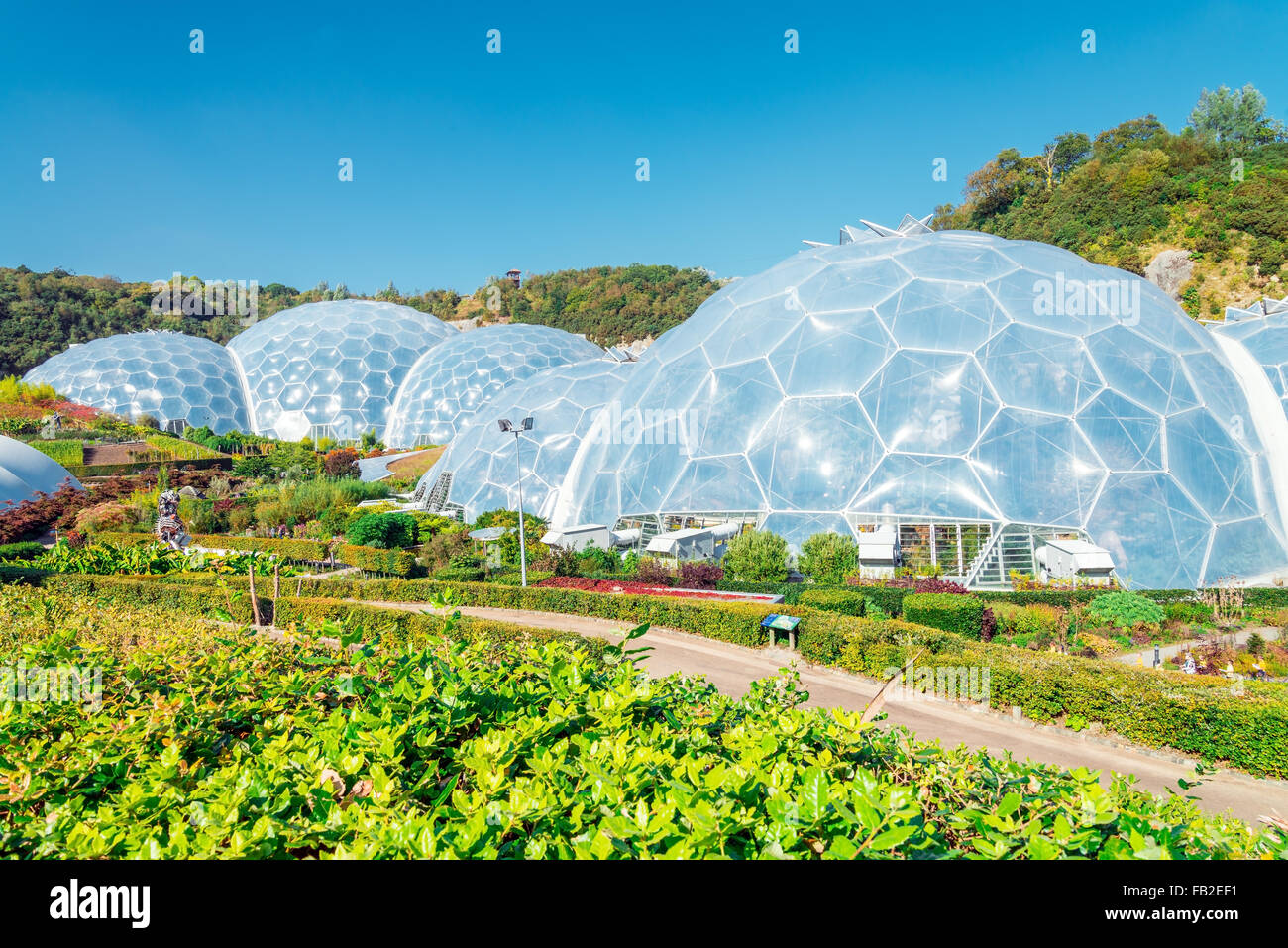 Dome of the Eden Project - Stock Image