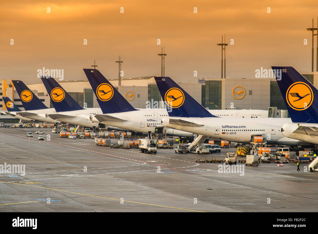 Lufthansa planes at Frankfurt international airport, Frankfurt, Hesse, Germany - Stock Image