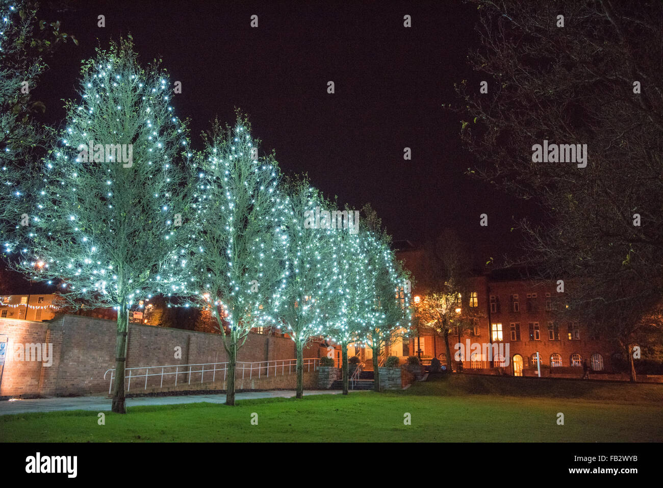 Dudley Council House lit up at night and a row of trees in Priory Park with Christmas lights decorating them - Stock Image