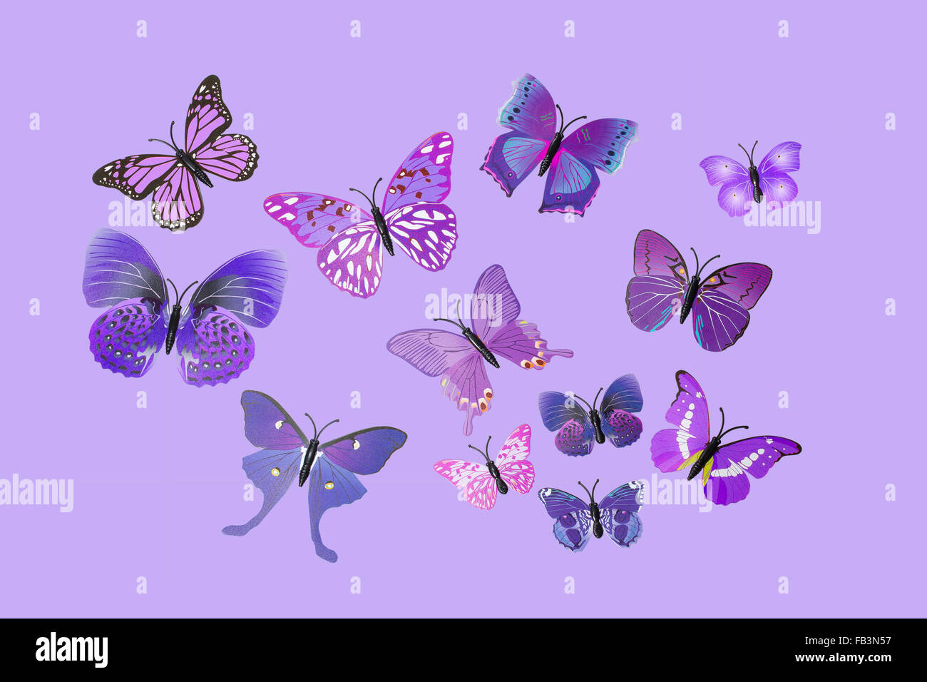 Collection of Purple Fantasy Butterflies Clip Art - Stock Image