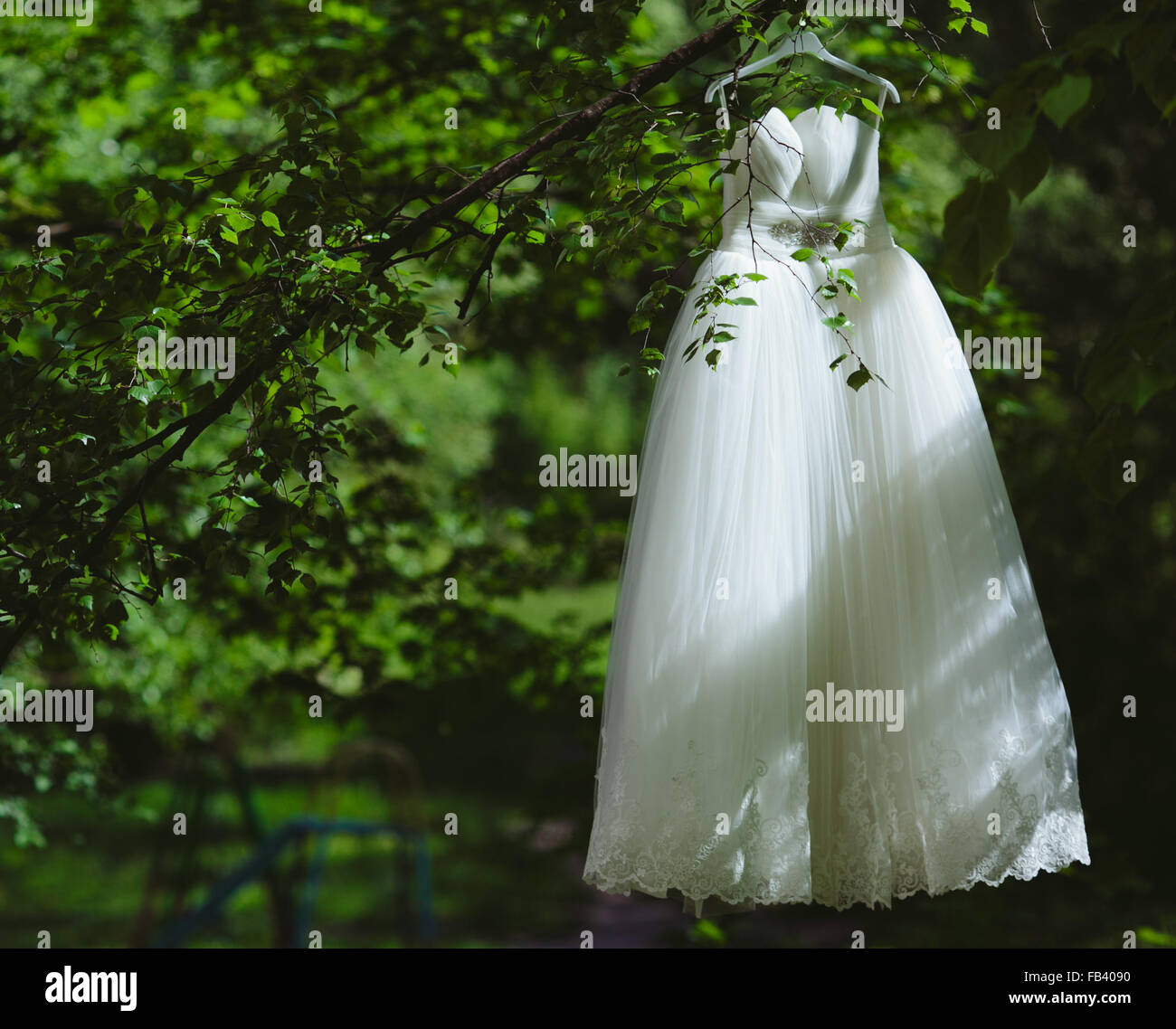 Wedding dress hanging on a tree - Stock Image
