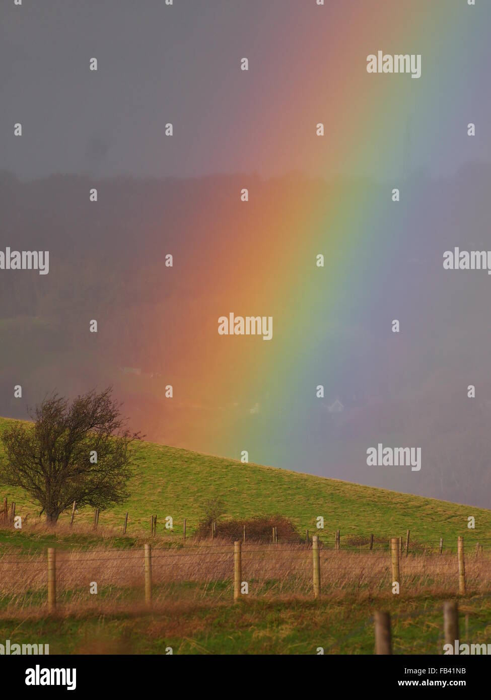 close up of rainbow with bright multi colours - Stock Image