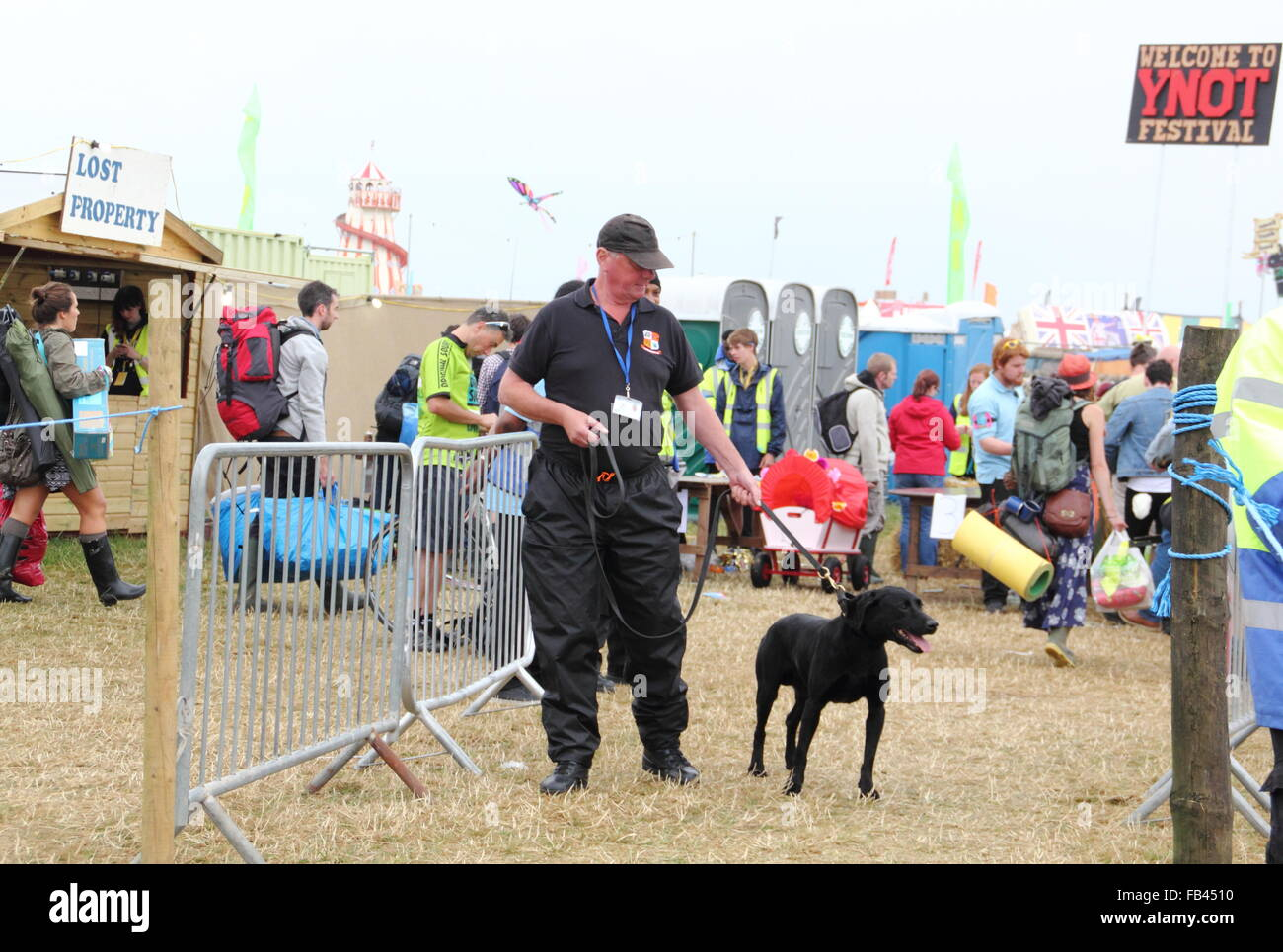 A sniffer dog and its handler search for illegal drugs during routine security checks at the Y Not music festival's - Stock Image