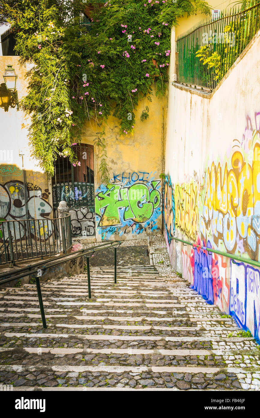 overgrown staircase with graffiti, alfama district, lisbon, portuga - Stock Image