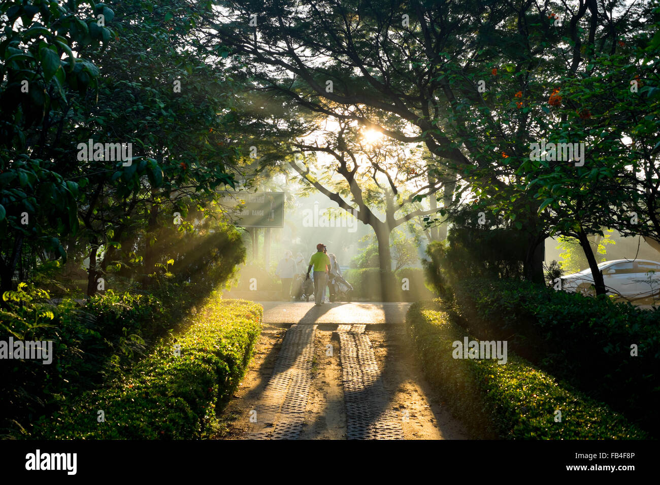Golfer walking to teeing ground in the morning and the sunlight shining through the tree - Stock Image