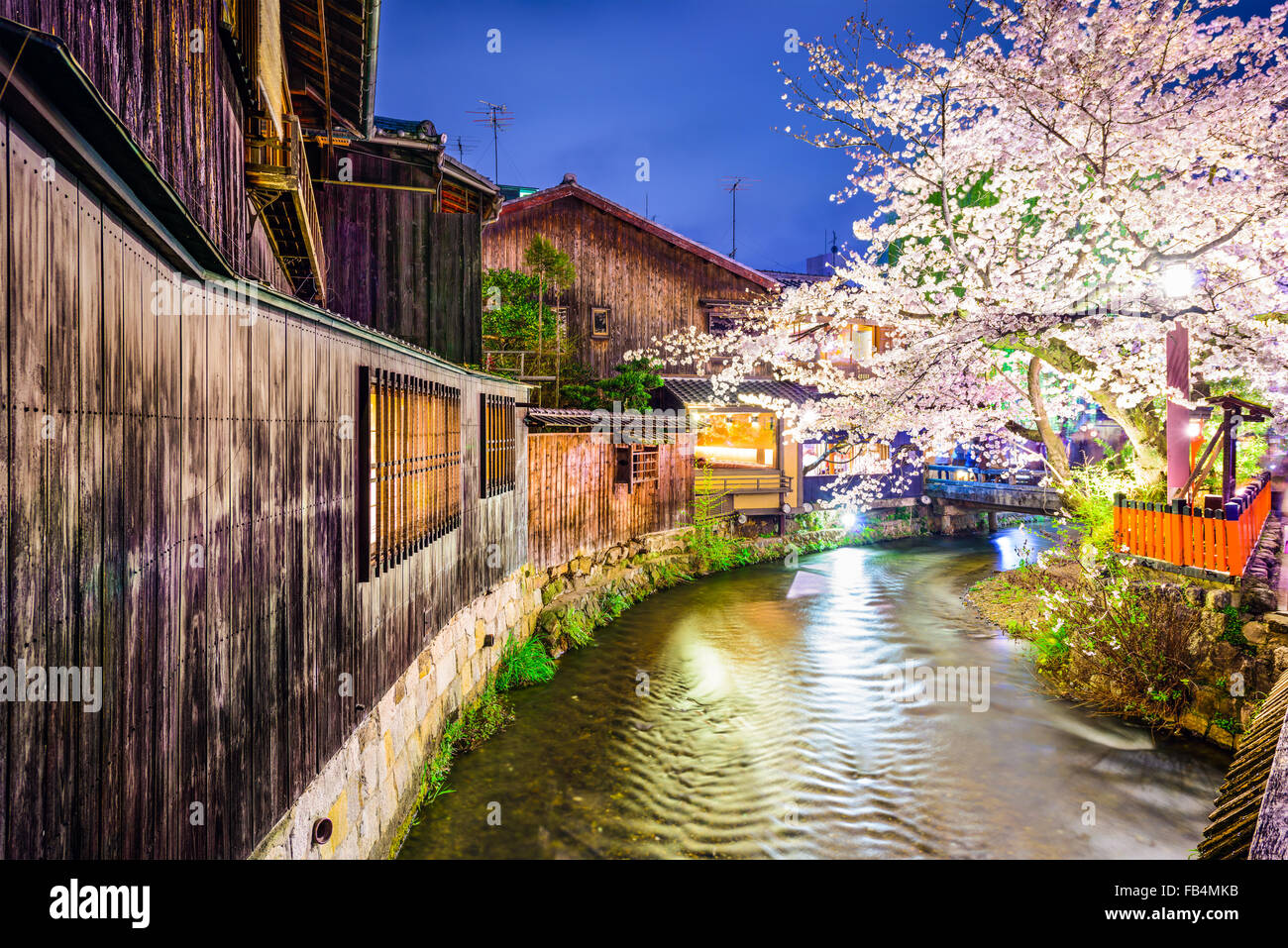 Kyoto, Japan at the Shirakawa River in the Gion District during the spring cherry blosson season. - Stock Image