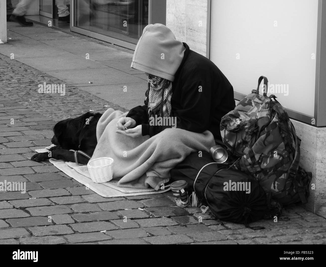 beggar with his dog sitting on the street in Bonn City, Germany - Stock Image