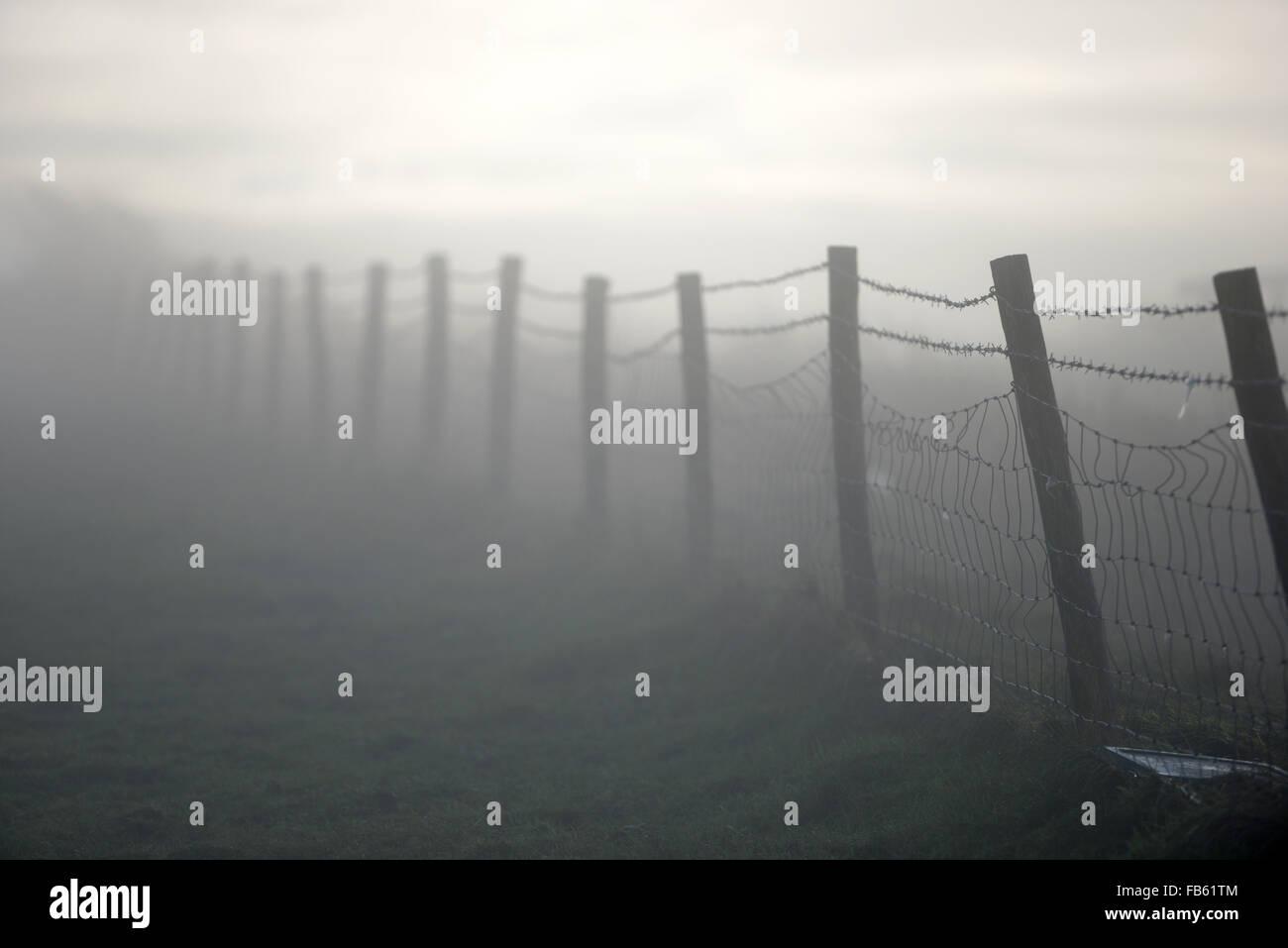Misty fence - Stock Image
