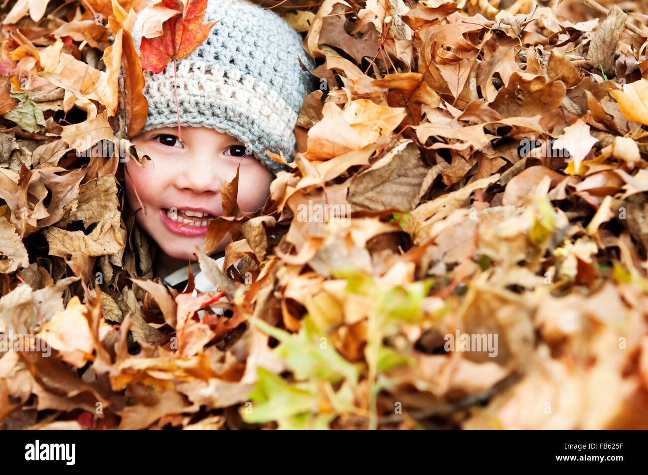 Little smiling boy peeking out of leaves - Stock Image