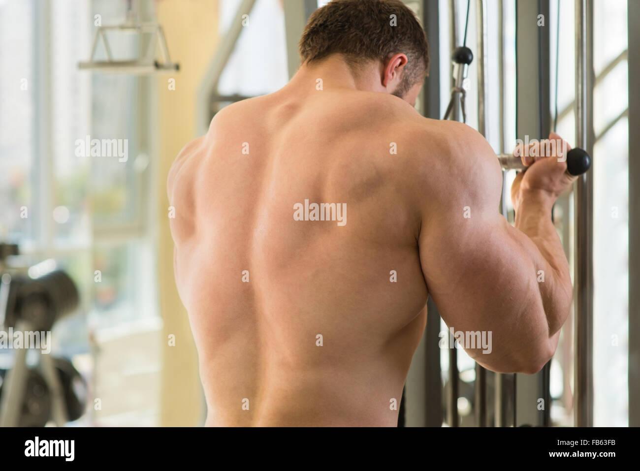 Muscular man's back. - Stock Image
