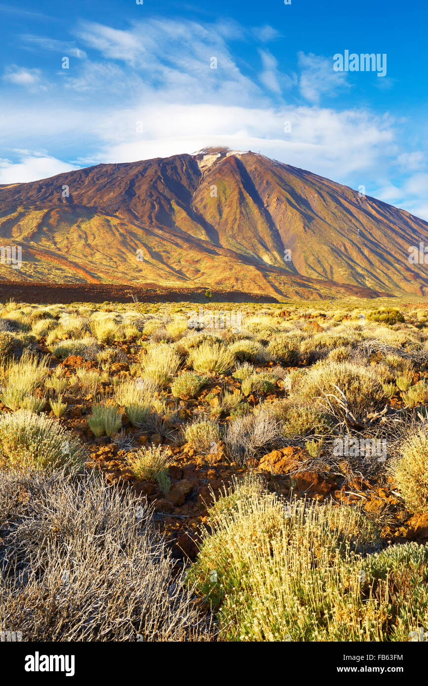 Tenerife - Teide National Park, Mount Teide, Canary Islands, Tenerife, Spain - Stock Image
