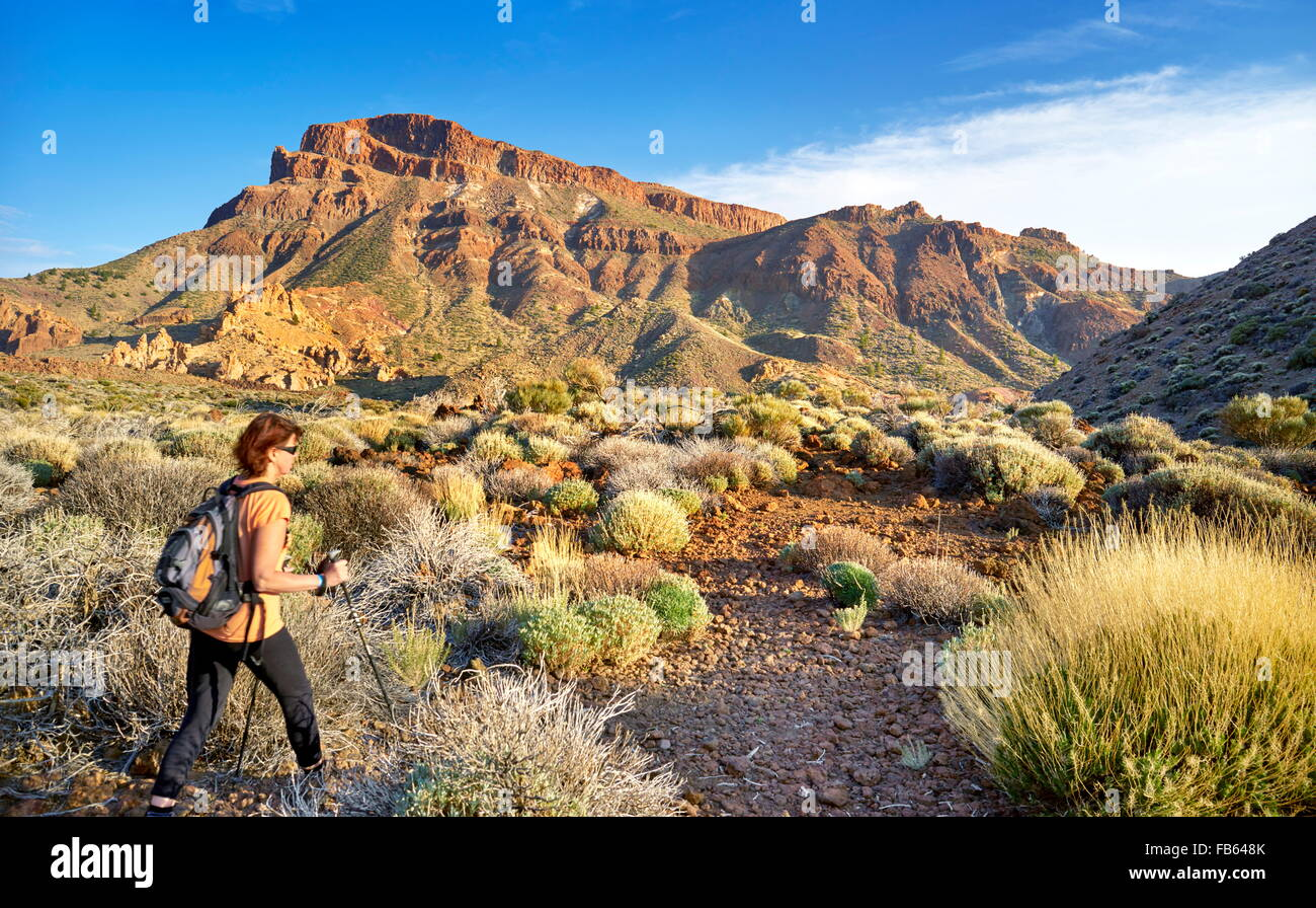 Nordic walking in Teide National Park, Tenerife, Canary Islands, Spain - Stock Image