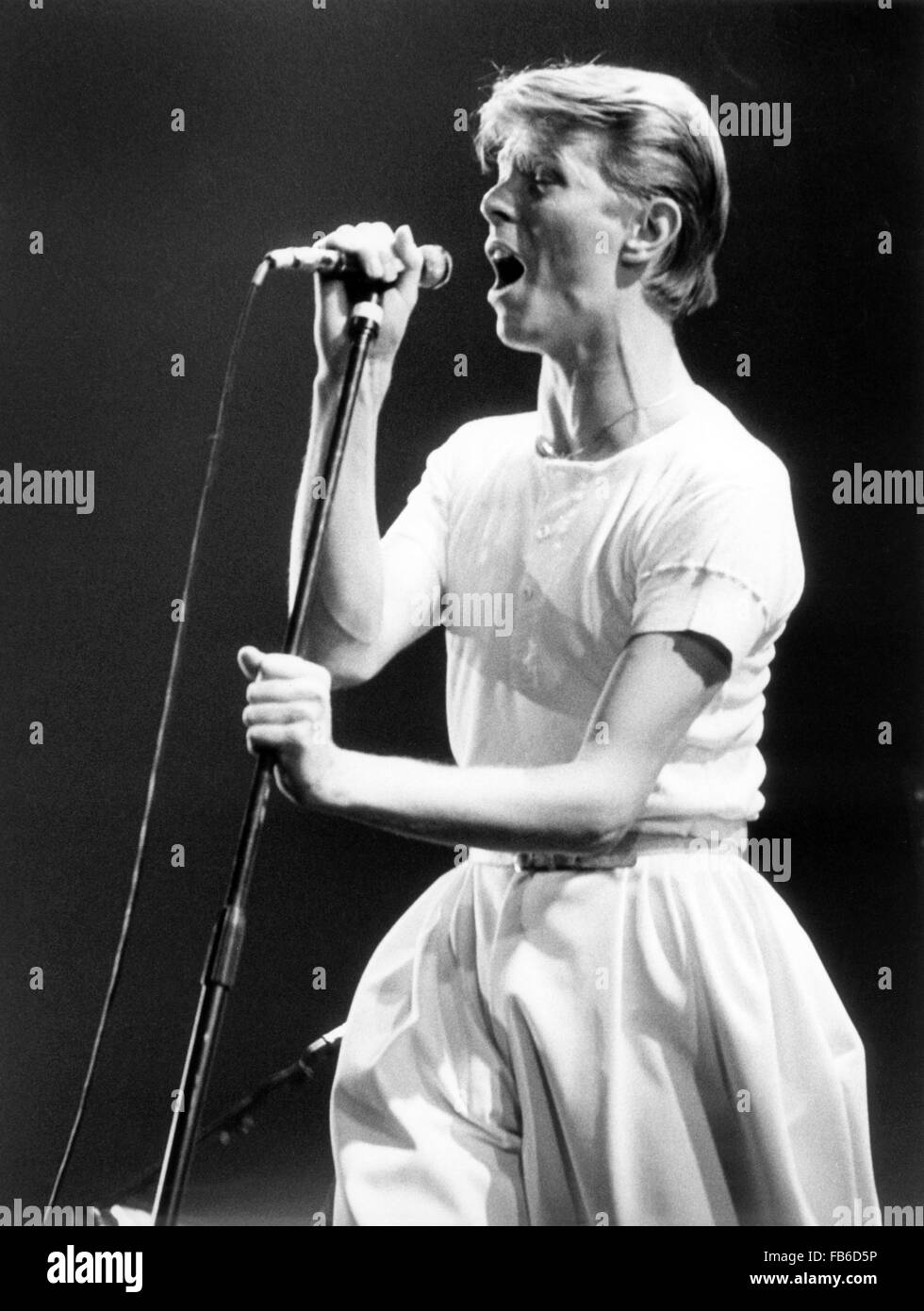David Bowie in concert on 14 May 1978 in the Festhalle in Frankfurt - Germany. Stock Photo