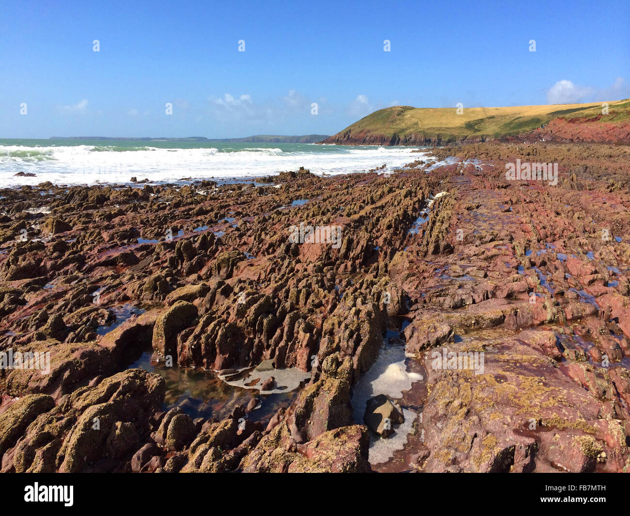 Old Red Sandstone beds on the beach at Manobier - Stock Image